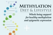 Methylation Diet & Lifestyle eBook