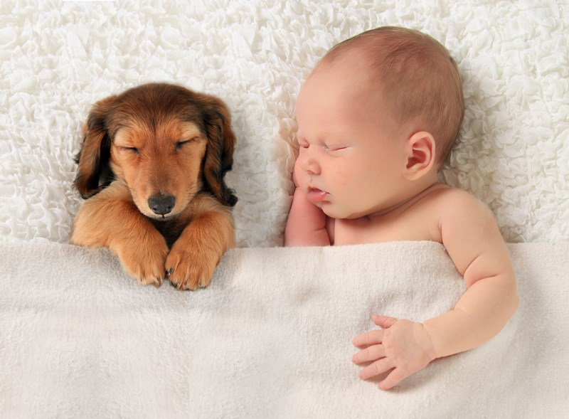 Baby_and_Dog